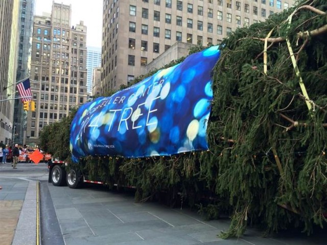 The Sigafoos' Christmas tree pulls into Rock Center earlier this month (photo courtesy TODAY show)