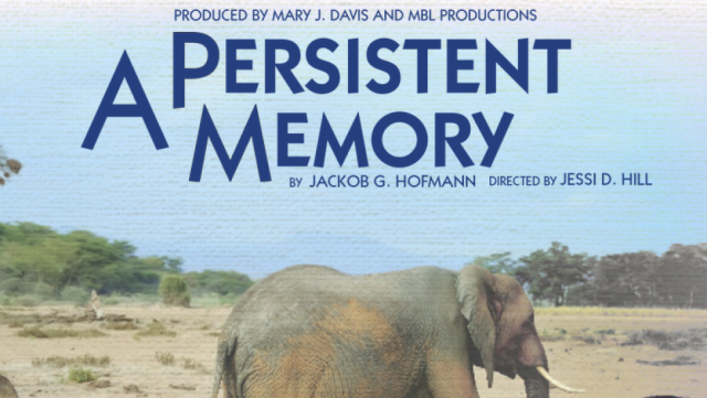 a persistent memory