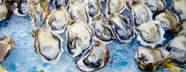 Oysters are on the menu at annual culinary festival featuring bivalve mollusks