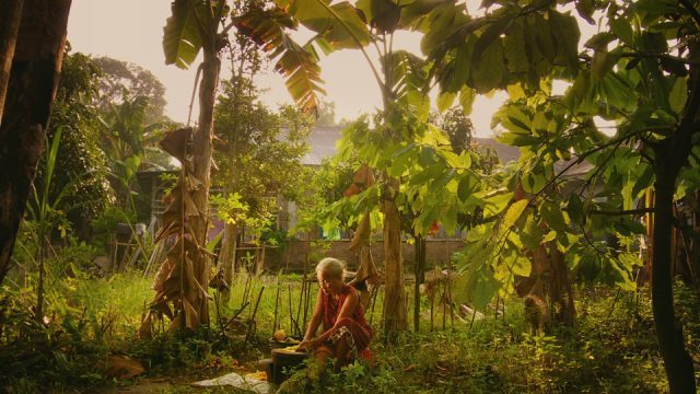 A family searches for answers in THE LOOK OF SILENCE