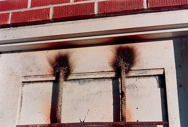 William Eggleston, Memphis, dye-transfer print, ca. 1971–74 (© Eggleston Artistic Trust)
