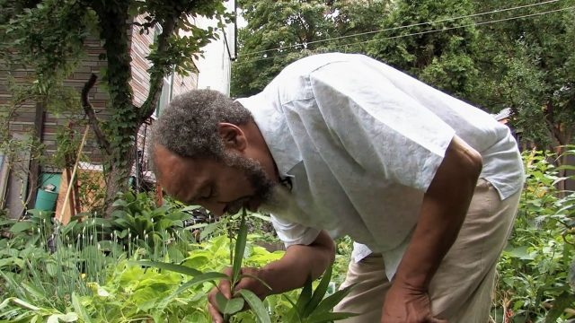 Milford Graves enjoys a bite in his garden in new documentary about the unique percussionist and philosopher
