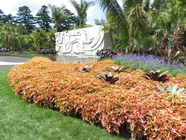 """""""As far as I'm concerned, there are no ugly plants,"""" Roberto Burle Marx, """"Function of the Garden"""" lecture (photo by twi-ny/mdr)"""